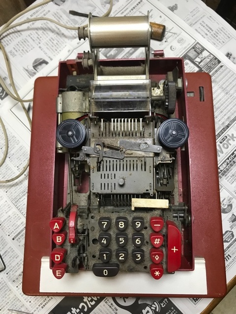 DB139E1C-BCA8-42F0-AF5A-F6290BCE5C38.jpeg